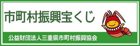 banneriseebi.jpg
